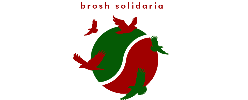 Nace Brosh Solidaria
